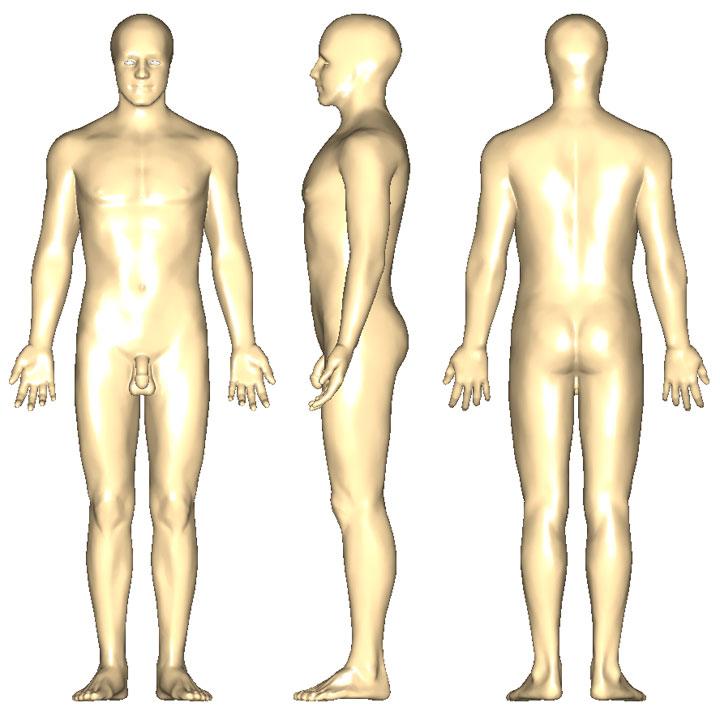 解剖学的正位